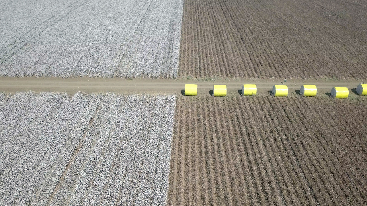 Aerial image of a vast Cotton field showing both pre and post harvest, with cotton bales wrapped in yellow plastic wraps.
