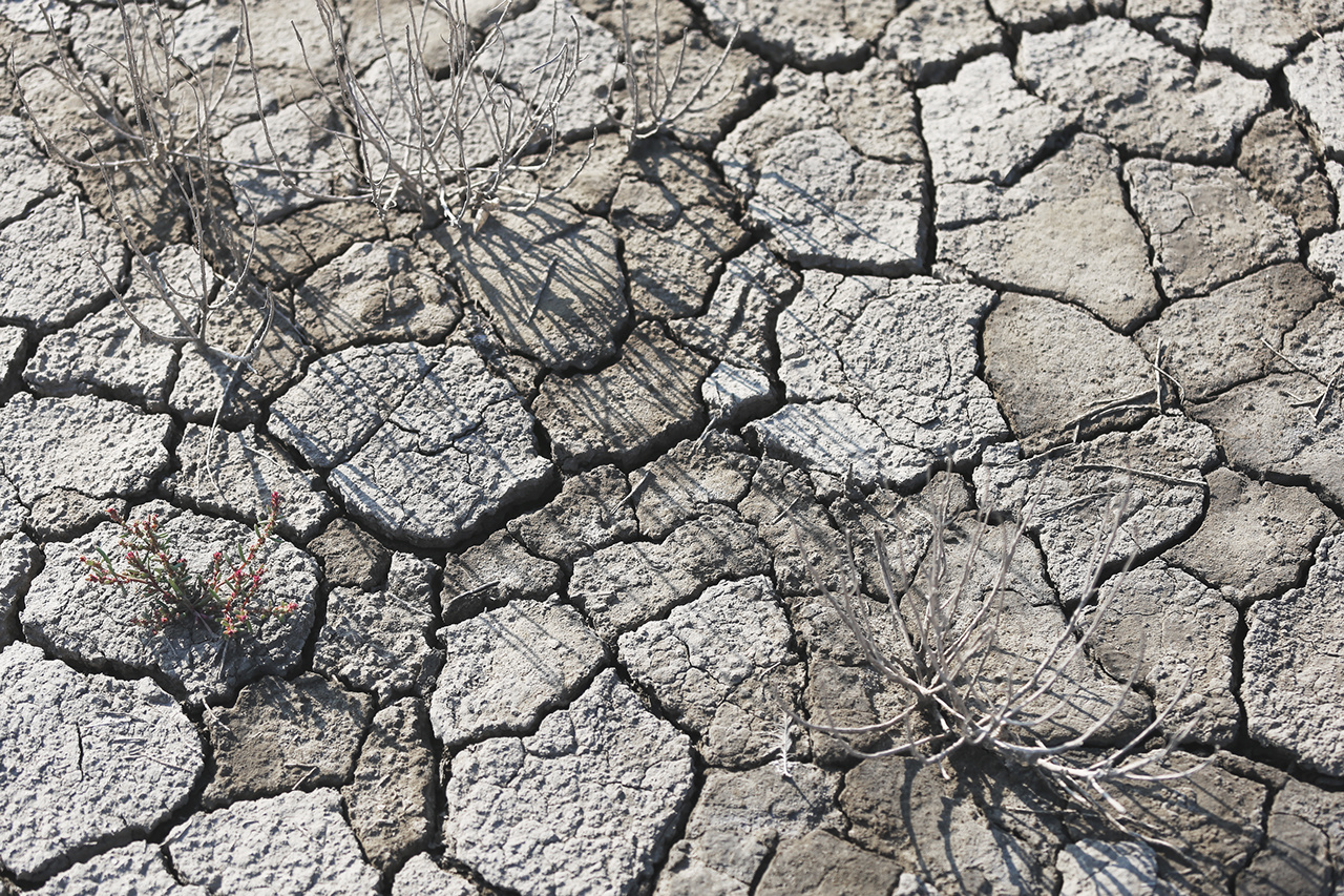 cracked ground, earthquake