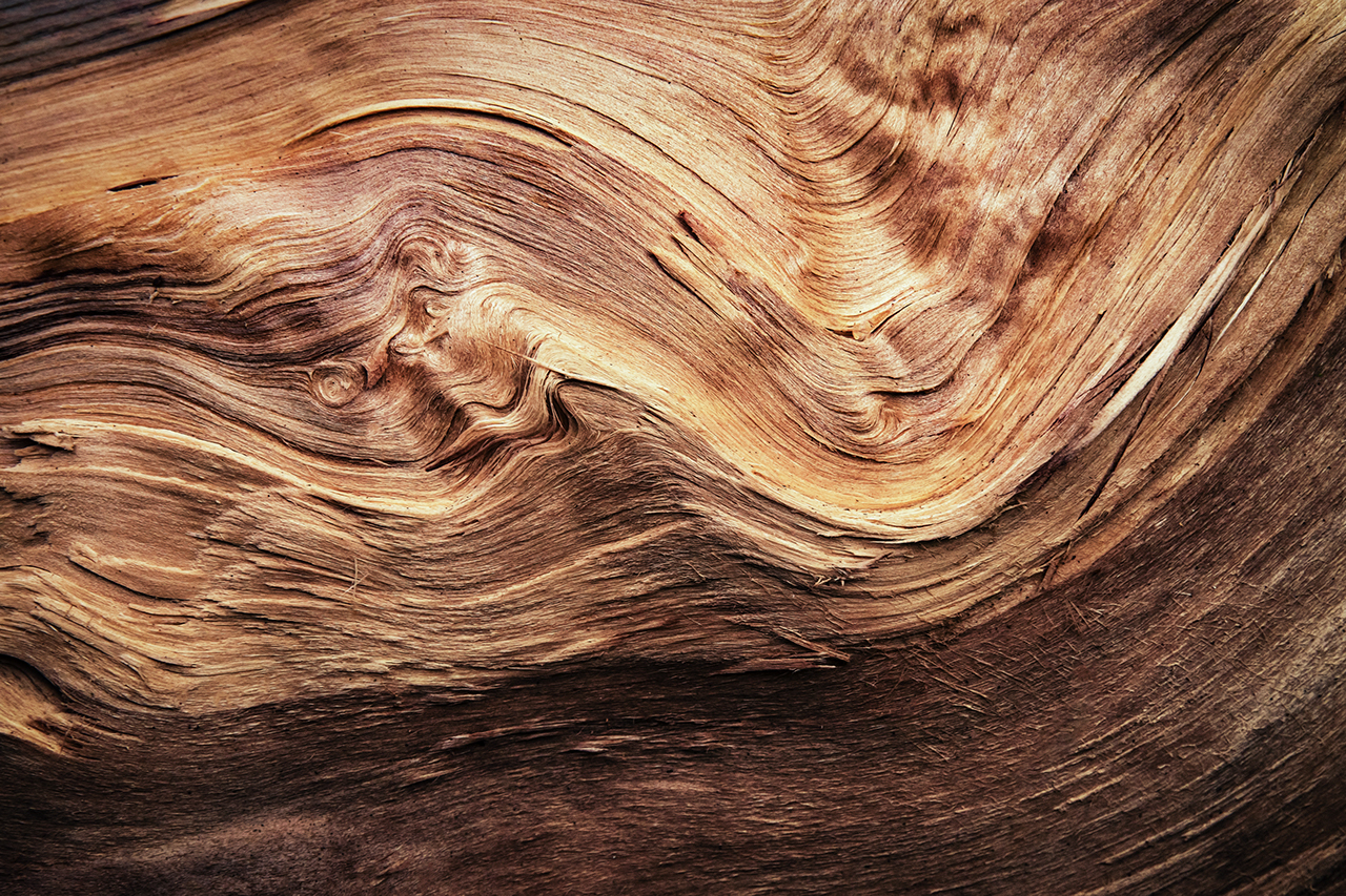 abstract detail of a wavy split wood